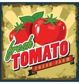 vintage tomato vector image vector image