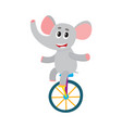cute little elephant character riding bicycle vector image vector image