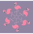 Pink flamingo on one leg Round circle compisition vector image vector image