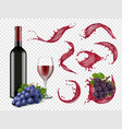 wine splashes liquid red drops grapes bottles and vector image vector image