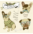 Cute dogs collection vector image vector image