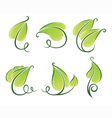 decorative green leaves vector image vector image
