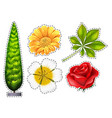 Different types of flower vector image