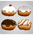 Hanukkah donuts set vector image