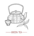 kettle cup and tea leaves in hand drawn style vector image vector image