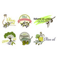 olive oil logo labels and design elements vector image