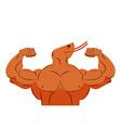 Strong athlete shrimp Fitness marine animal vector image