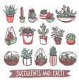Succulents And Cacti Sketch Collection vector image