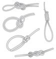 Set of knots vector image