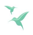 Exotic bird Hummingbird vector image
