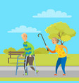 aged people walking in park pensioner vector image vector image