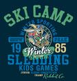 cute rabbit sledding winter camp vector image