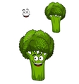 Farm fresh green broccoli vegetable vector image