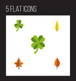 flat icon leaves set of leaf foliage maple and vector image vector image