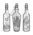 Ocean flora and fauna in bottles vector image