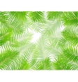 Palm leaf background vector image vector image