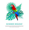 summer holiday text poster vector image