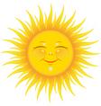 sunshine vector image vector image