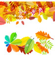 autumn background with colorfl falling leaves vector image