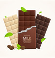 chocolate package bar blank - milk white vector image vector image