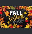 november fall autumn festival announcement vector image