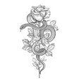 twisted snake and rose on high stem vector image vector image