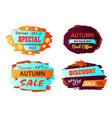 autumn big sale best offer vector image vector image