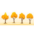 autumn trees set vector image