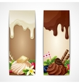 Chocolate banners vertical vector image vector image