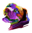 colorful head dog on pop art style vector image vector image