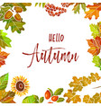 hello autumn poster with colorful leaves and vector image vector image