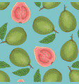 seamless pattern with ripe guava with leaf vector image