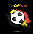 soccer ball and belgium flag vector image
