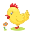Cute hand drawn chick cock chicken yellow kids vector image