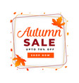 autumn sale poster design template vector image