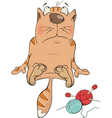 Cat and threads vector image