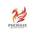 luxury phoenix logo concept vector image vector image
