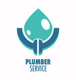 plumber service isolated icon plumbing repair vector image vector image