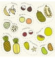 Set of hand drawn tropical fruits part 1 vector image vector image