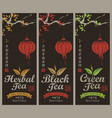 set of labels for the black green and herbal tea vector image vector image