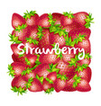 strawberry square background vector image vector image