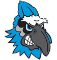 blue jay head sports logo mascot vector image vector image