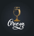 cerveza hand letteringtranslation from vector image
