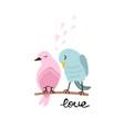 colorful cute couple birds vector image