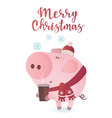 cute pig in a winter scarf vector image vector image
