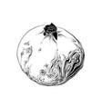 hand drawn sketch garnet in black color vector image vector image