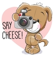 Puppy with a camera vector image vector image