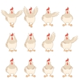 set white chicken flat icons vector image