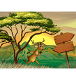 A deer following the wooden arrowboard vector image vector image