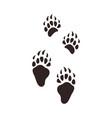 bear footprints animal paw silhouette flat vector image